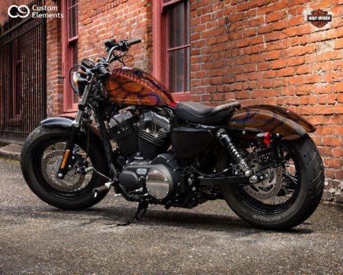 Harley Brazilian Rainbow Boa