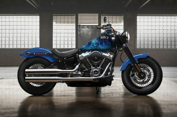 Harley Davidson Skull Smoke Design